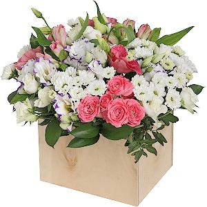 Доставка горшечных цветов idtwbz доставка цветов в городе королев